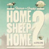 Home Sheep Home 2 Game