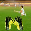 Wicket Keeping Volt